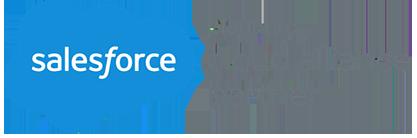 LeadClic Consultoría de Salesforce